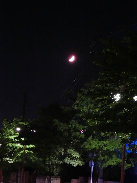 16.05.13c.jpg